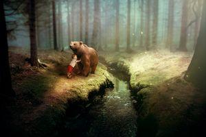 Бесплатные фото фэнтези,медведь,ребенка,леса,холостяк,деревья,трава
