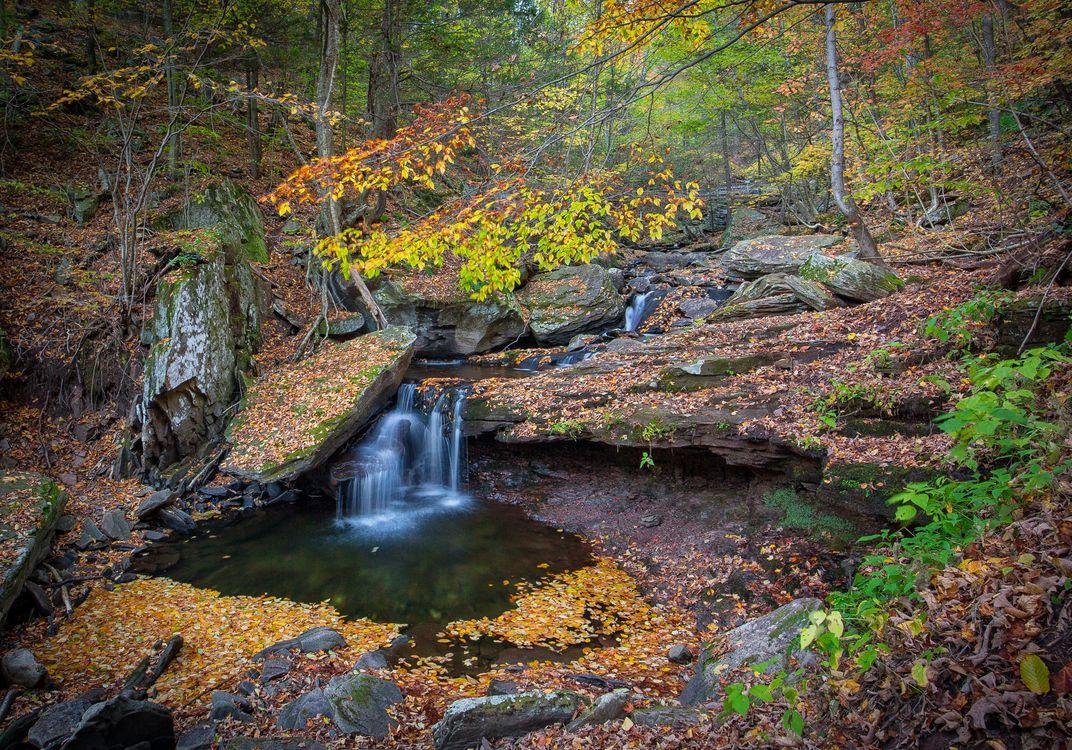 Обои осенние цвета, Пенсильвания, водопад картинки на телефон