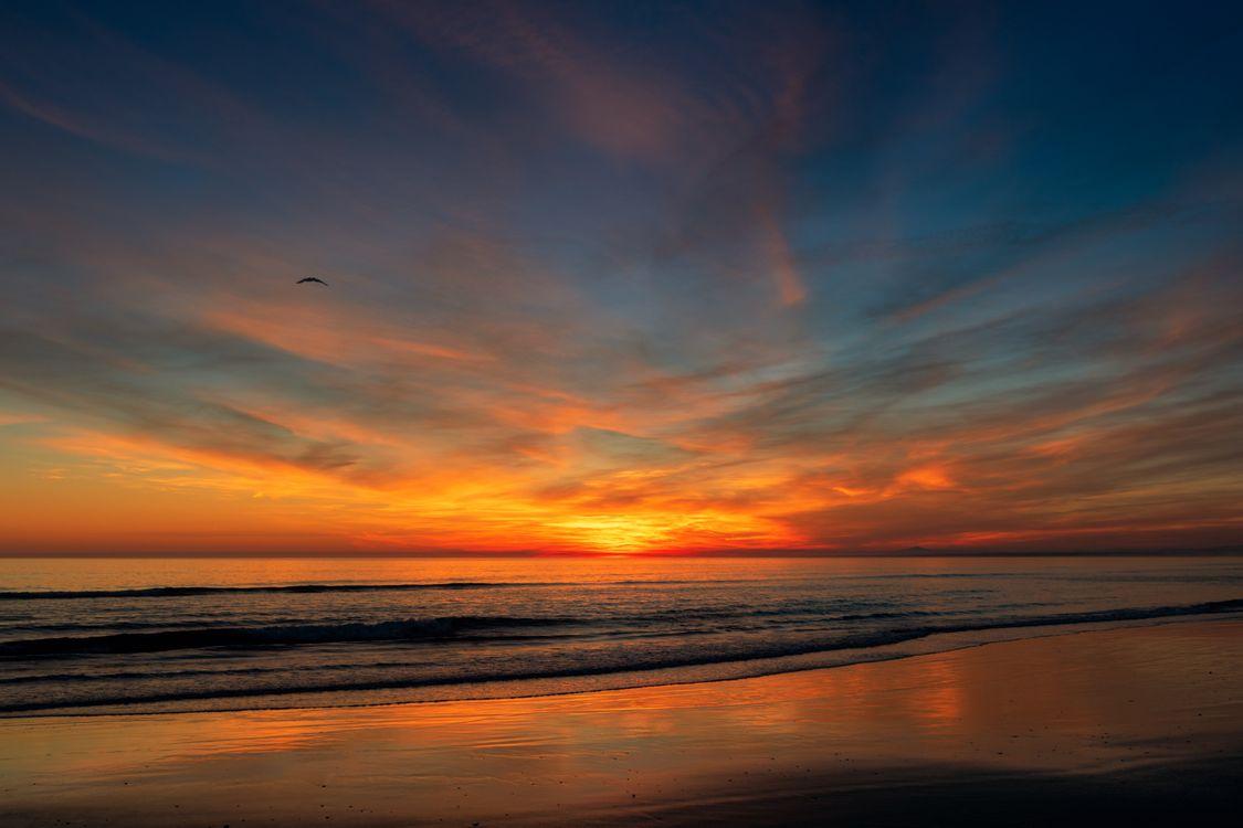 Фото бесплатно закат, небо, горизонт, послесвечение, закат солнца, море, восход, красное небо утром, рассвет, спокойствие, океан, атмосфера, берег, солнце, облако, пейзажи
