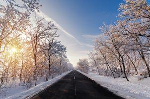 Заставки зима,дорога,закат,солнечные лучи,снег,деревья,природа