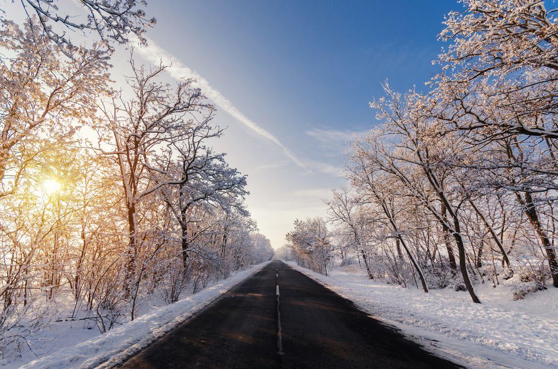 Фото бесплатно зима, дорога, закат, солнечные лучи, снег, деревья, природа, пейзаж, пейзажи