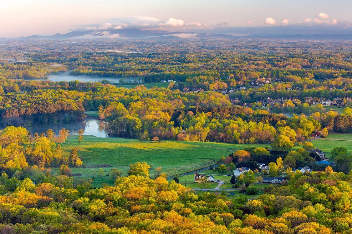 Поле из озер и деревьев · бесплатное фото