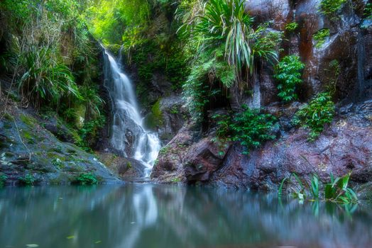 Photo free landscape, Lamington National Park, waterfall