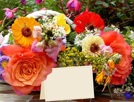 Заставки цветы, красочные, оригинальные