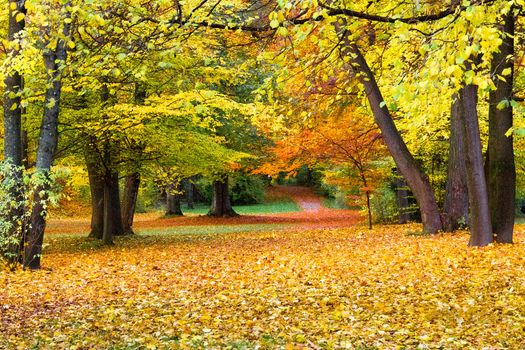 Photo free autumn paints, landscape, paints of autumn