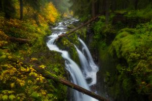 Заставки Sol Duc Falls, Olympic National Park, Washington