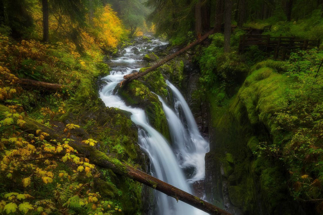 Фото бесплатно Sol Duc Falls, Olympic National Park, Washington - на рабочий стол