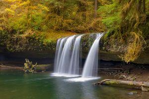 Фото бесплатно лес, водопад, конечно