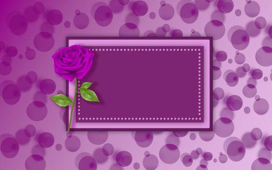 Фото бесплатно фон, текстура, роза