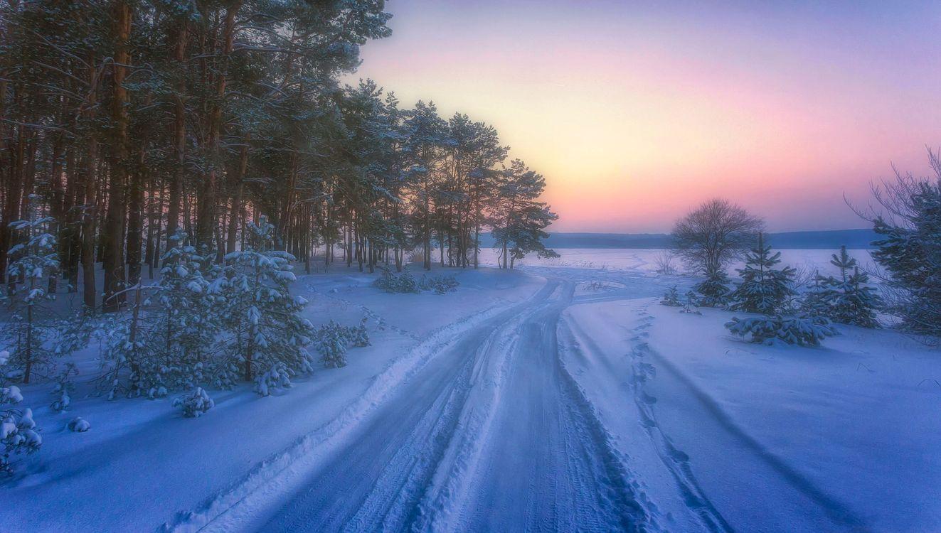 Фото бесплатно зима, дорога, закат, снег, лес, деревья, природа, пейзаж, пейзажи