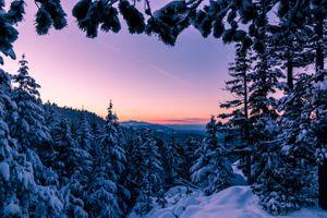 Бесплатные фото Зимняя сказка,Остров Ванкувер,Британская Колумбия,Winter Wonderland,Vancouver Winter,зима,закат