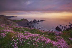 Фото бесплатно Хартленд, море, океан