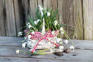Photo free basket, bouquet, flowers