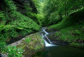 Заставки пруд, пейзаж, водопад