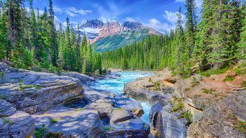Бесплатные фото Каньон Мистая,Национальный парк Банф,Альберта,Канада,река,скалы,лес