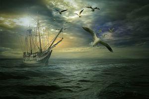 Бесплатные фото закат,море,волны,корабль,парусник,птицы,чайки