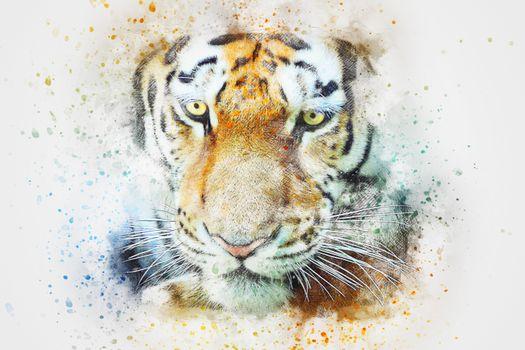 Фото бесплатно тигр, искусство, лицо