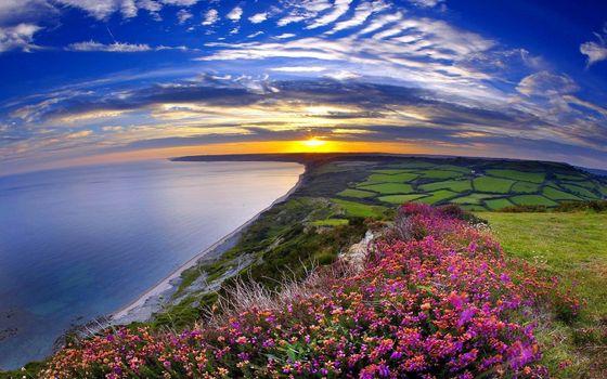 Фото бесплатно пляж, пейзаж, море, закат, береговая линия, берег в цветах, поле, цветы