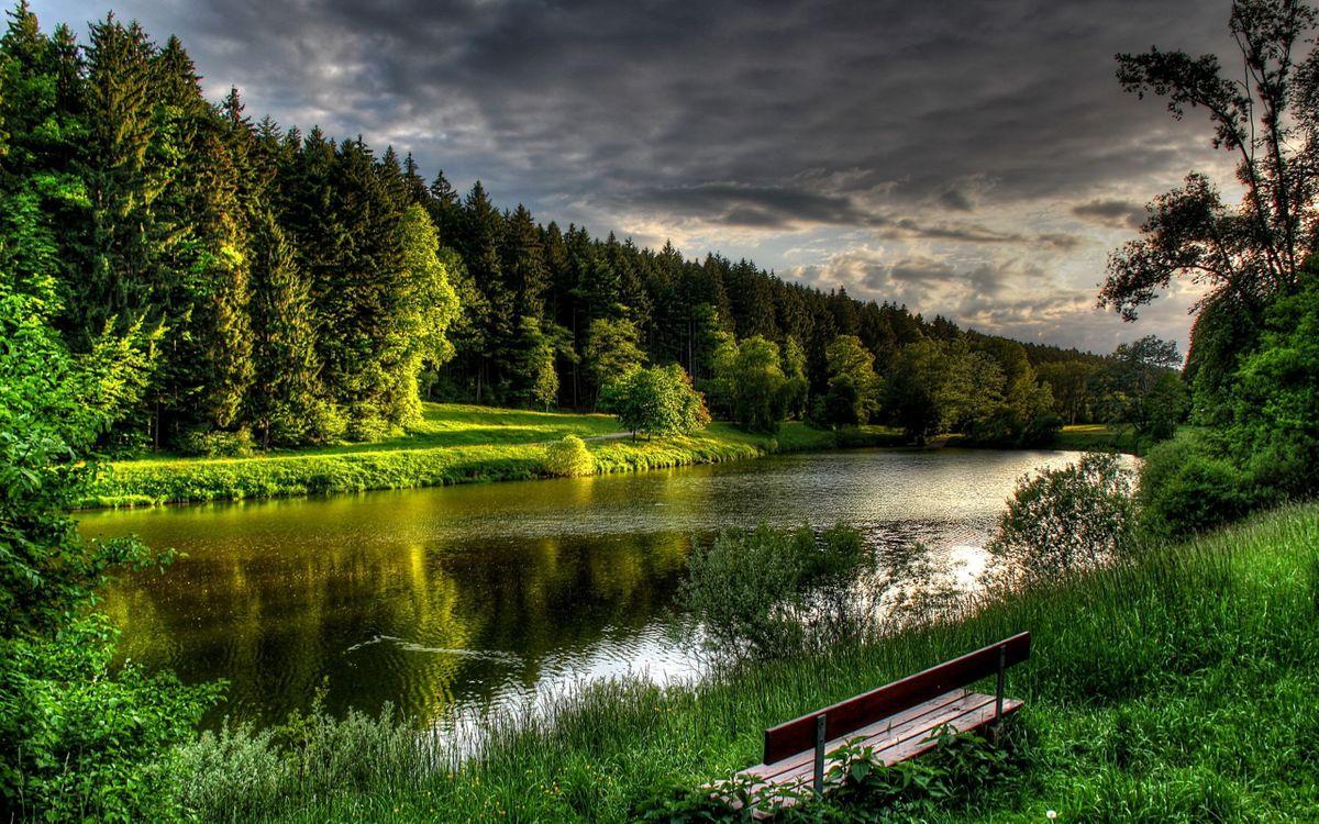 Фото бесплатно озеро, лес, скамейка - на рабочий стол