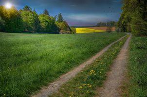 Фото бесплатно рассвет, поле, дорога