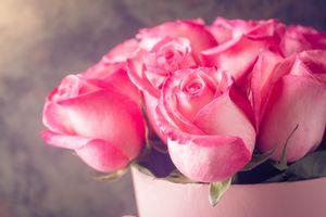 Бесплатные фото букет, розы, цветы, бутоны