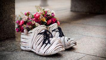 Photo free decor, flowers, sandals