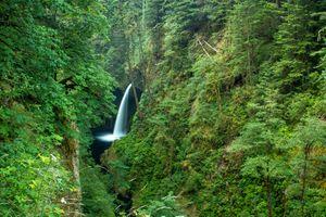 Фото бесплатно Metlako Falls, Columbia River Gorge, водопад, ущелье, лес, деревья, пейзаж