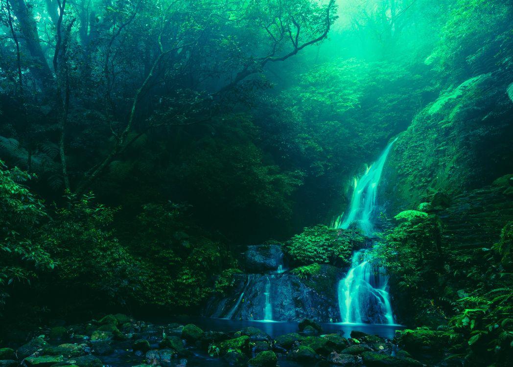Фото бесплатно Ян Миншан, Тайбэй, Тайвань - на рабочий стол