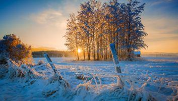 Зимнее ранчо