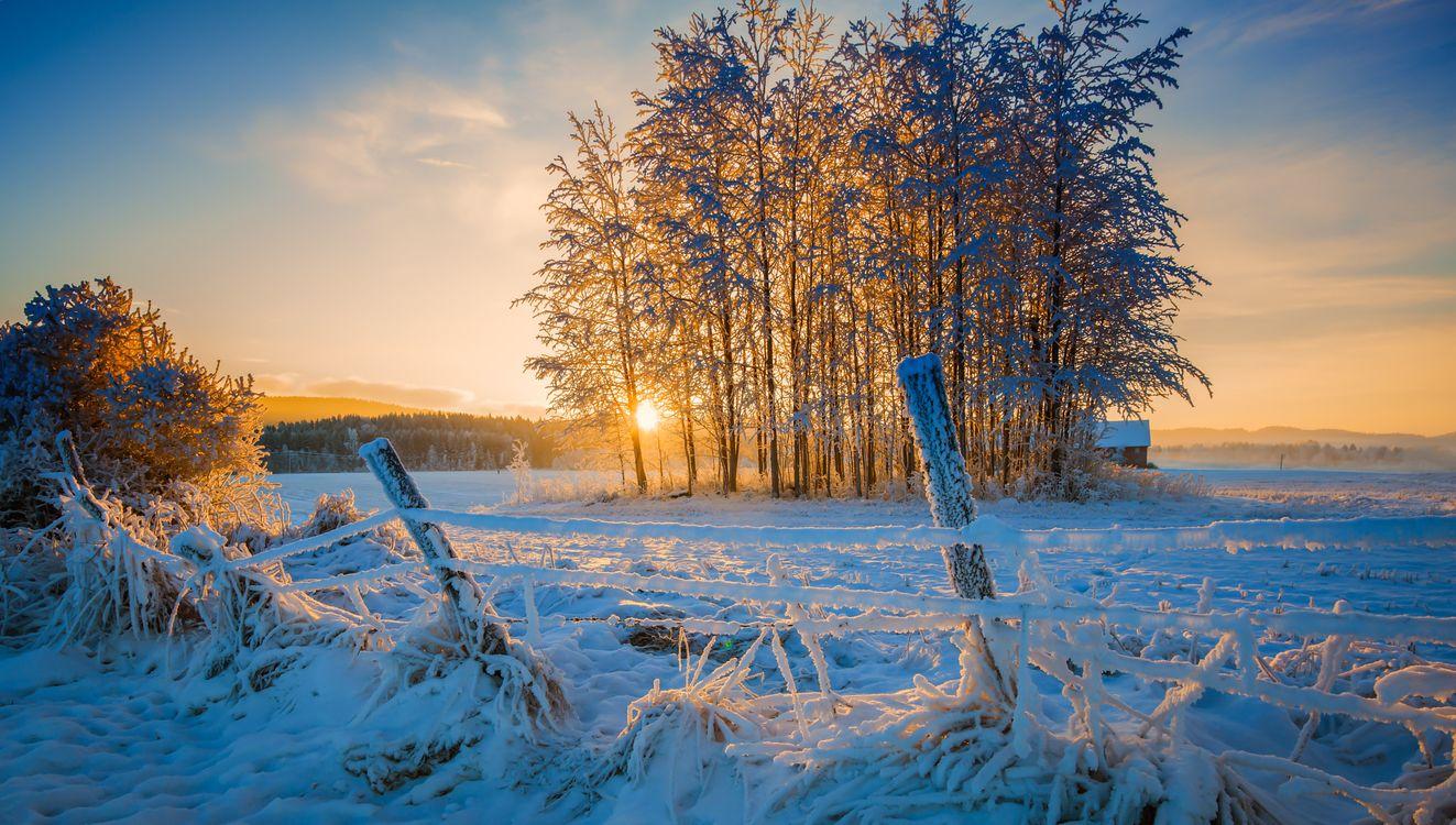 Зимнее ранчо · бесплатное фото