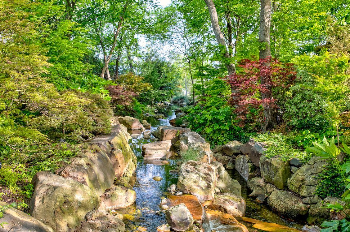 Фото бесплатно камни, пруд, ручей - на рабочий стол