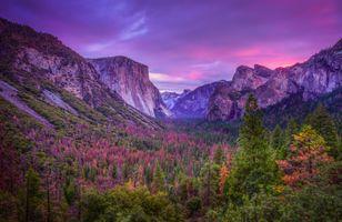 Бесплатные фото Национальный парк Йосемити,Калифорния,горы,деревья,закат,пейзаж,Yosemite National Park