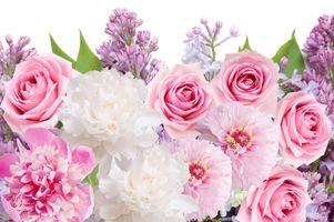Photo free lilacs, peonies, flowers
