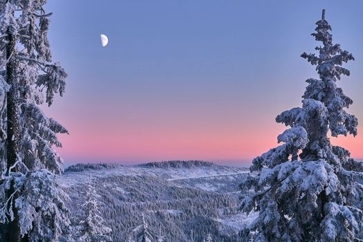 Фото бесплатно Нордшварцвальд, Германия, зима