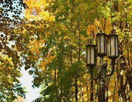 Бесплатные фото Осень,фонарь,город,парк,деревья