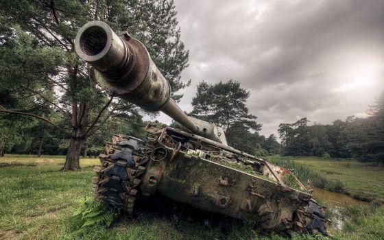 Бесплатные фото танк,грязь,трава,гусеницы,дуло,ствол,поле,деревья,траншея