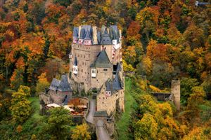 Фото бесплатно Рейнланд-Пфальц, деревья, Германия