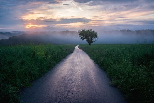 Фото бесплатно закат, рассвет, дорога