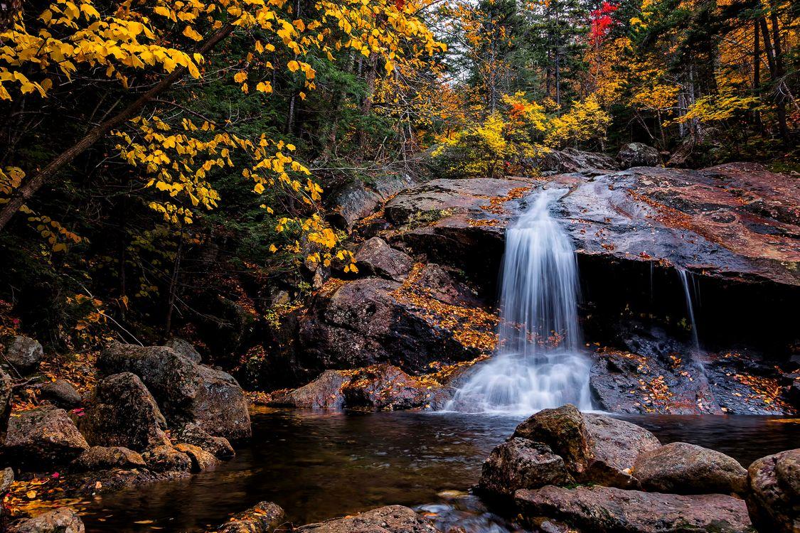 Обои осень, водопад, лес картинки на телефон