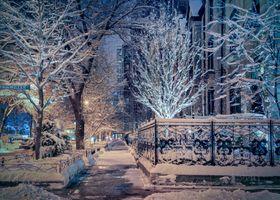 Бесплатные фото Чикаго,West Schiller Street,зима,город,огни,иллюминация,гирлянды