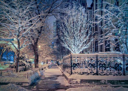 Бесплатные фото Чикаго,West Schiller Street,зима,город,огни,иллюминация,гирлянды,улица,дома,свет,ночь