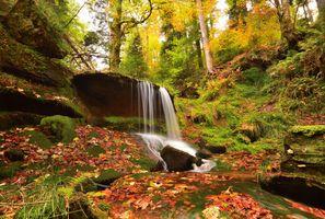 Фото бесплатно водопад, осенние листья, пейзаж