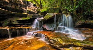 Заставки камни, деревья, поток