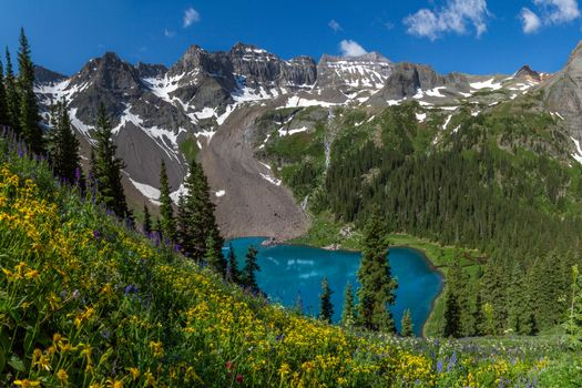 Бесплатные фото Colorado,Wildflowers,Lower Blue Lake,Mount Sneffels Wilderness