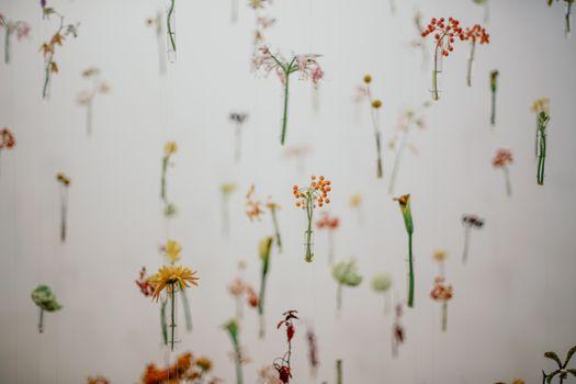 Фото бесплатно floresbymeme, цветок, цветочные