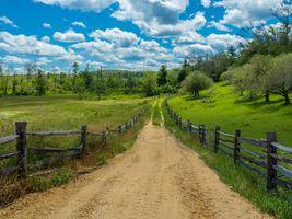 Фото бесплатно трава, пейзаж, деревья