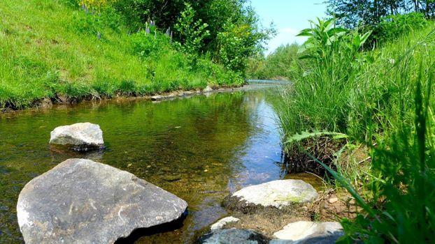 Фото бесплатно солнечный день, лес, озеро