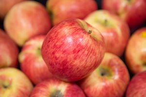 Спелое большое яблоко · бесплатное фото