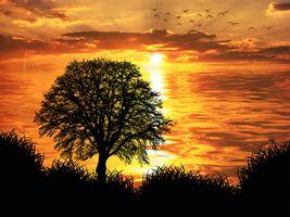 Заставки природа, закат, горизонт