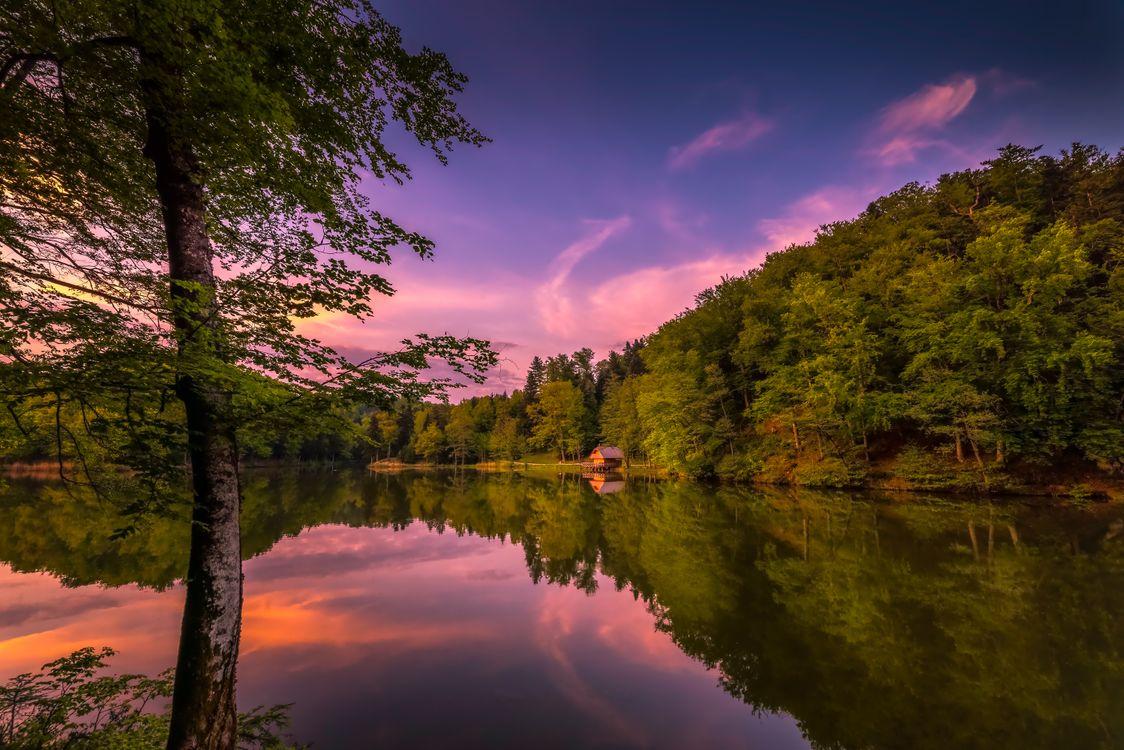 Фото бесплатно дерева, Хорватия, озеро - на рабочий стол